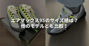 airmax95-size-top